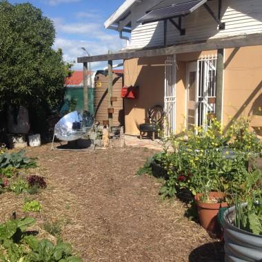 Seed Urban Abundance Centre WDC2014